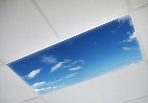 Fluorescent Light Covers >> Details About Fluorescent Light Covers Cloud 020