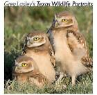 Greg Lasley's Texas Wildlife Portraits by Texas A & M University Press (Hardback, 2008)