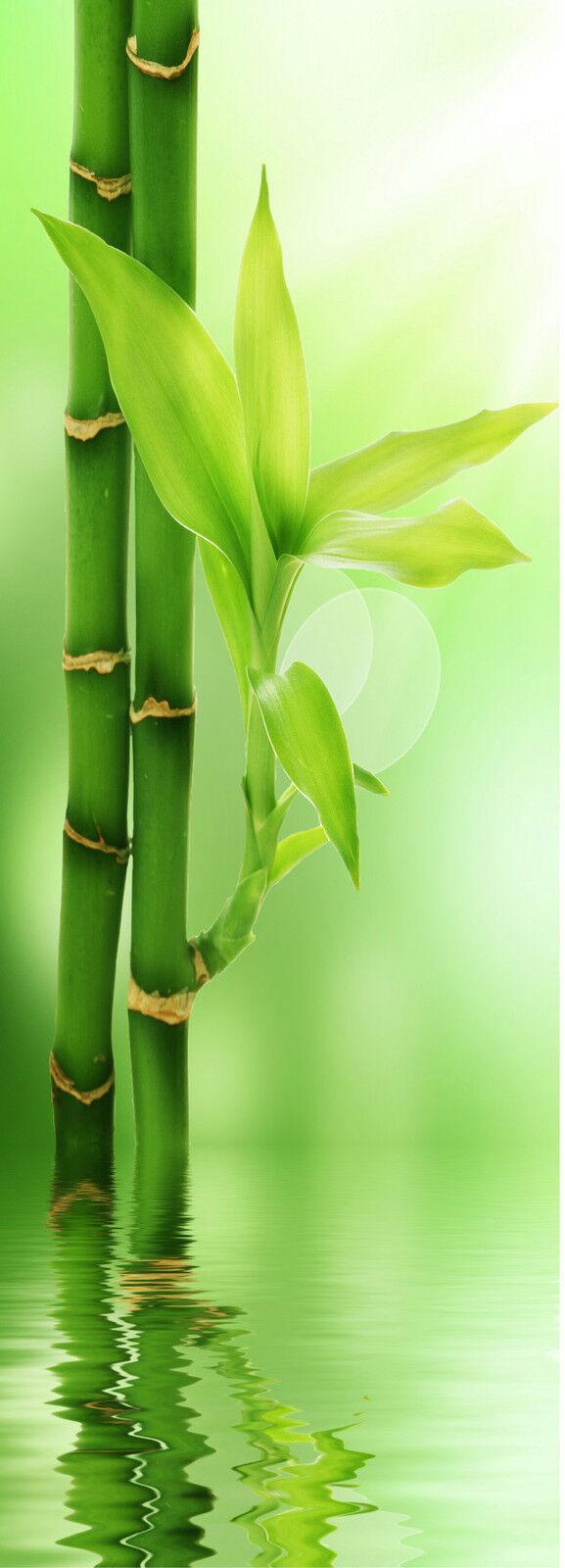 Aufkleber für Tür Flach Bambus 73x204cm Ref 516
