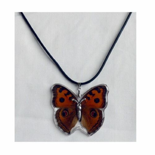 Real Insect Butterfly Wings Necklace Pendant Lucky Charm Jewellery