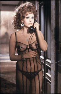 "Sophia Loren Photo Print 13x19"""