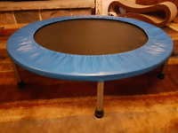 Trampoline Mini Buy New Used Goods Near You Find Everything From Furniture To Baby Items In Ontario Kijiji Classifieds Used sportek mini trampoline,38in diameter and 9 high.used from kids and still in good condition, except some tiny normal tear.see pictures attached.pick up on kipling and eglinton.cash only. kijiji