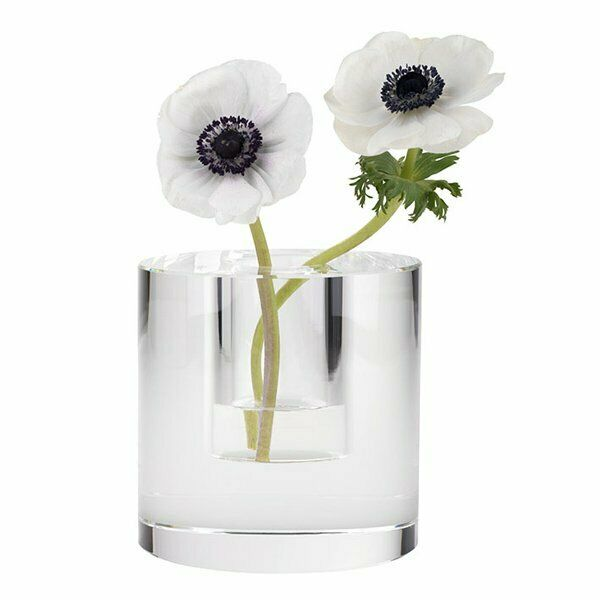 Gift Company Vase Dioptrics Glaszylinder (14,5x15cm)