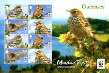 Guernsey 2017 MNH Meadow Pipit WWF Endangered Species 8v M/S Birds Stamps