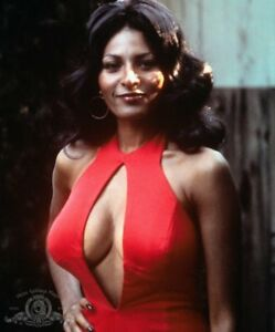 """PAM GRIER 8/"""" X 10/"""" glossy photo reprint"""