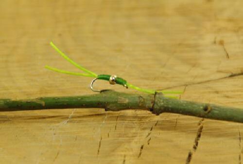 Talon dieci Flexi Bloodworm Chartreuse taglia 12 TROTA FL