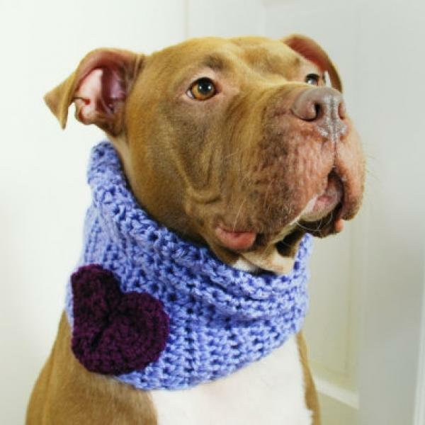 purplec with Purple Heart Crochet Cowl for Dogs (CTC001) - Free Shipping