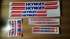 Skyway Sticker Set - Printed - Old School BMX Decals