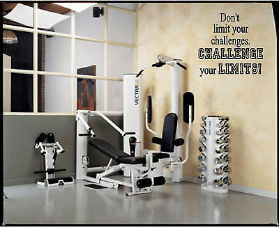 Challenge your Limits- vinyl wall decal quote- gym, fitness, workout, motivation