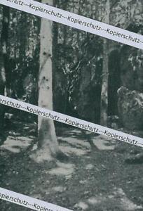 Hohlenstein-Asselfingen-Lonetal-Hoehle-um-1915-Z-1-6