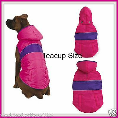 East Side Collection Brite Stripe Parkas Pink with Purple Stripe (Teacup Size)