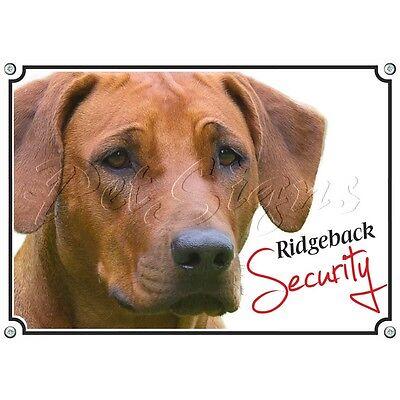 Begeistert Hundewarnschild Rhodesian Ridgeback - Uv-beständiges Metallschild Rheuma Und ErkäLtung Lindern