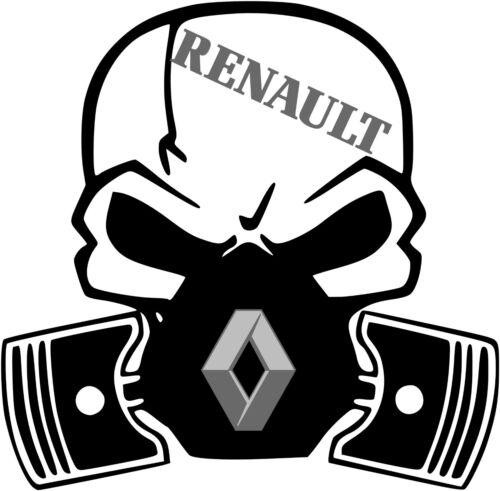 Renault Cráneo Pegatina Varios Colores Brillo Vinilo Calcomanía-Auto 144