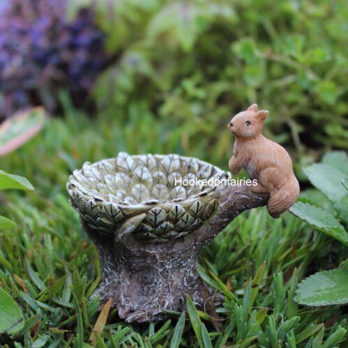 Miniature Squirrel Birdbath  WS 1002 Bird Bath Fairy Garden