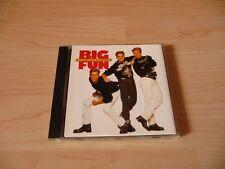 CD Big Fun - A pocketful of dreams - 1990 incl. Blame it on the Boogie - SAW