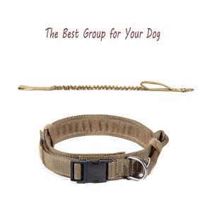 1-5-034-Tactical-Metal-Buckle-Adjustable-Dog-Collar-w-Stretchable-Dog-Leash