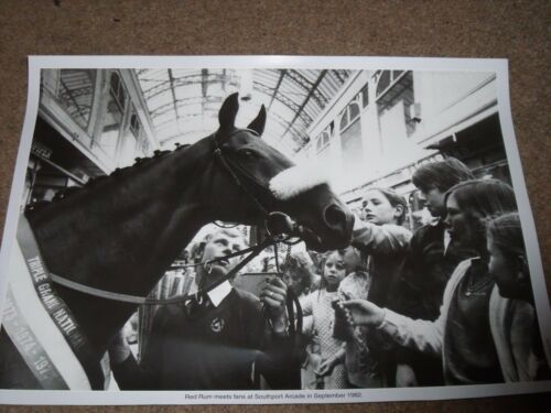 RED RUM PRINT SOUTHPORT ARCADE SEPTEMBER 1982 HORSE RACING