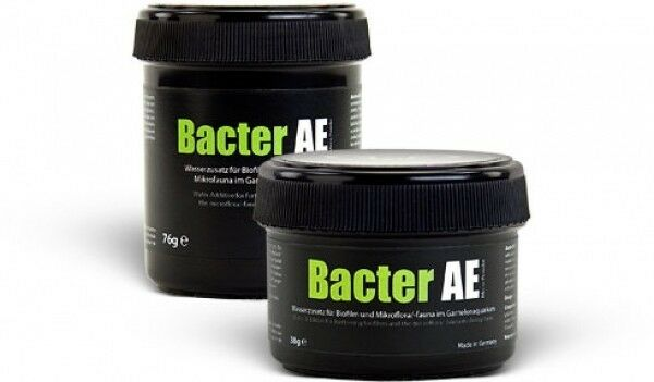 GlaGarten Bacter AE Micro Powder Water Conditioning for Crystal Red Shrimp Tibee