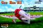 Dora Wings 1//48 Gee Bee Super Sportster R-1 plastic kit