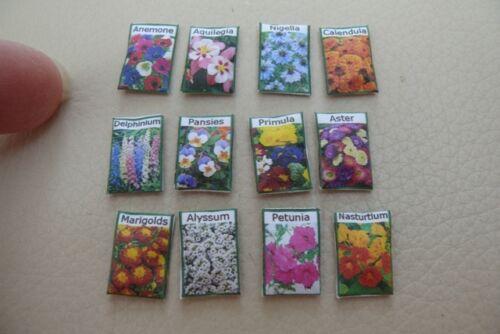 1 12A DOLLS HOUSE-semi di fiori pacchetti-SG
