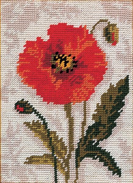 Poppy :  Anchor  Tapestry  Kit : Starter : MR911