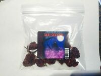 Carolina Reaper Chili Pepper Seed Pods 10 Whole Dried Hotter Than Ghost