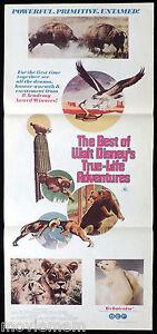 BEST-OF-WALT-DISNEY-039-S-TRUE-LIFE-ADVENTURES-Original-Daybill-Movie-Poster
