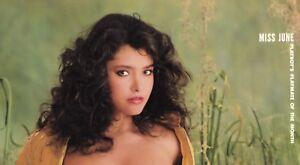 Devin DeVasquez Nude Photos 75