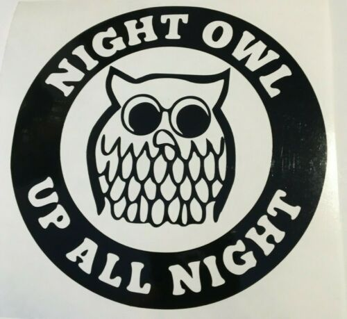 bumpers car decal// sticker for windows Night owl all night long panels