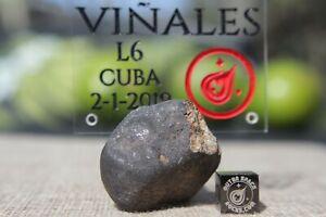 Vinales-Meteorite-31-6-gram-individual-from-Cuba-L6-Chondrite-Shock-level-3