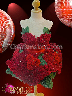CHARISMATICO Valentine's Red rose flower Dollie dress with green leaf underskirt