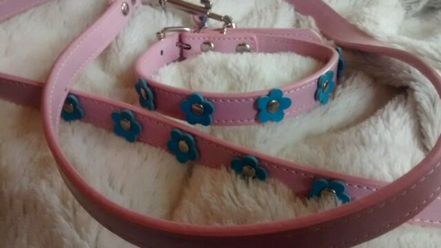 Faux Leather Pink Forget me not DOG PUPPY COLLAR LEAD SET SMALL So Pretty
