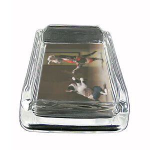 "Funny Cat Glass Ashtray D11 4""x3"" Silly Crazy Meow Cool Kitten"