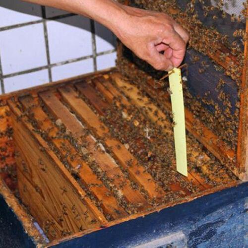 Bee Tötung gegen 999/% Mite Schädlingsbekämpfung Flumethrin  Streifen