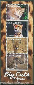 Sierra-Leone-2015-Felins-de-l-039-Afrique-feuille-neuf-sans-charniere