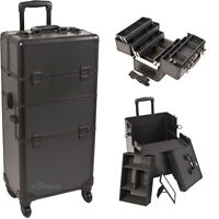 Sunrise Professional Beauty Rolling Train Case Trolley 2 In 1 Storage Organizer