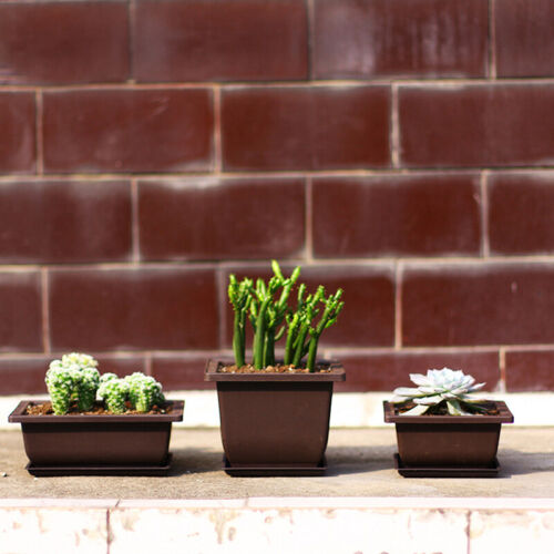 Flower Pot Tray Balcony Square Flower Bonsai Bowl Nursery Basin pots Planter US