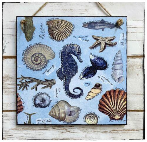 wall hanging plaque//picture Nautical ocean sea life seahorse shells symbols blue