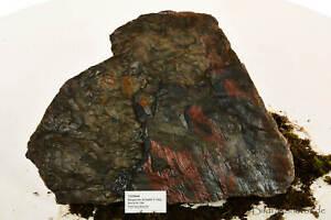 Ardoise Belge Stk105- 10kg- 43x32cm, Décoration Aquarium