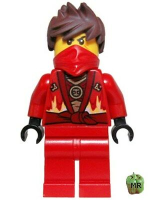 Cole - Brickipedia, the LEGO Wiki |Lego Ninjago Techno Suits