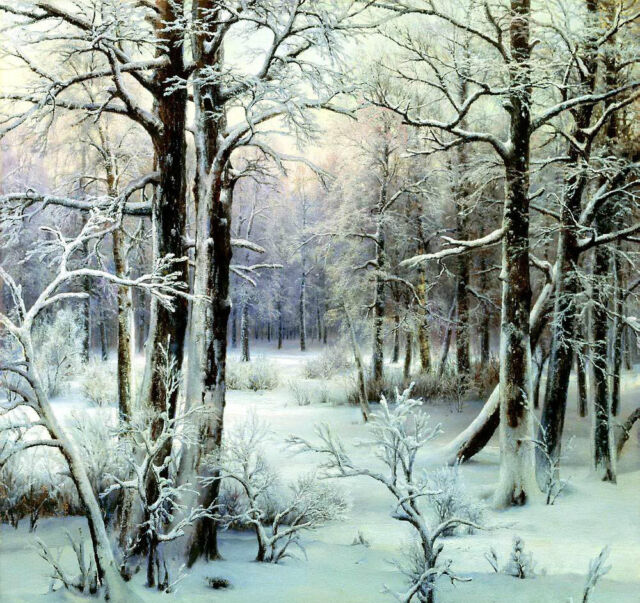 Oil painting Welz Ivan - Rime wonderful winter forest landscape free shipping