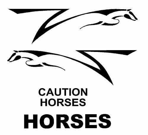2 x 5 foot Stylish Stylish Stylish Horse Logo with signs supplied as decals to fit on horsebox. ce835a