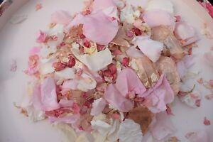 Biodegradable-Confetti-Rose-Gold-amp-Pink-Naturals-Petals-Delphinumns-Eco-1L