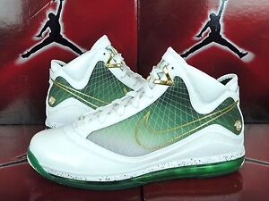 25705cec59c7 NEW NIKE AIR MAX LEBRON JAMES 7 VII AKRON MORE THAN A GAME MTAG CITY ...
