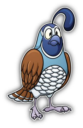 Funny Quail Bird Cartoon Car Bumper Sticker Decal /'/'SIZES/'/'