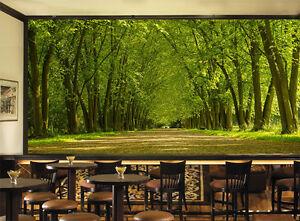 3d Arbres Foret 01 Photo Papier Peint En Autocollant Murale Plafond