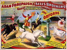 ADVERTISING CULTURAL CIRCUS FOREPAUGH ACROBAT HORSE ART POSTER PRINT LV637