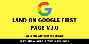 2021 Google SEO Rank #1 Page on Google in 21 Days Keyword Targeted SEO Service