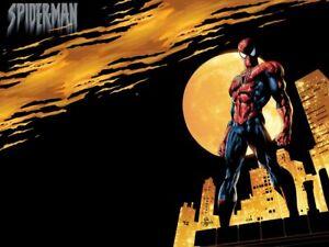 SPIDER-MAN-Die-Spinne-AUSWAHL
