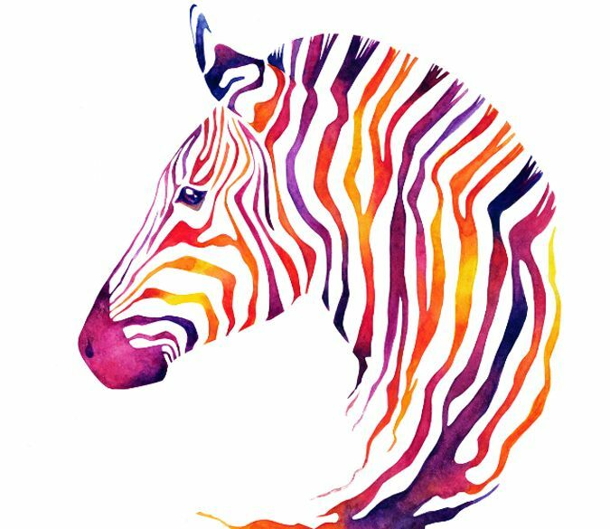 3D color Zebra 1 WallPaper Murals Wall Print Decal Wall Deco AJ WALLPAPER